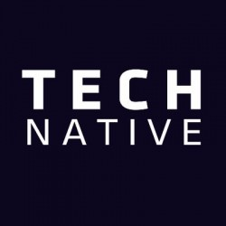 Artificial development (Technative)